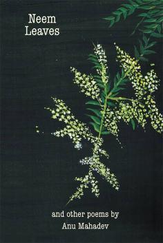Neem Leaves -Anu